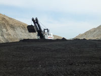 Company excavator